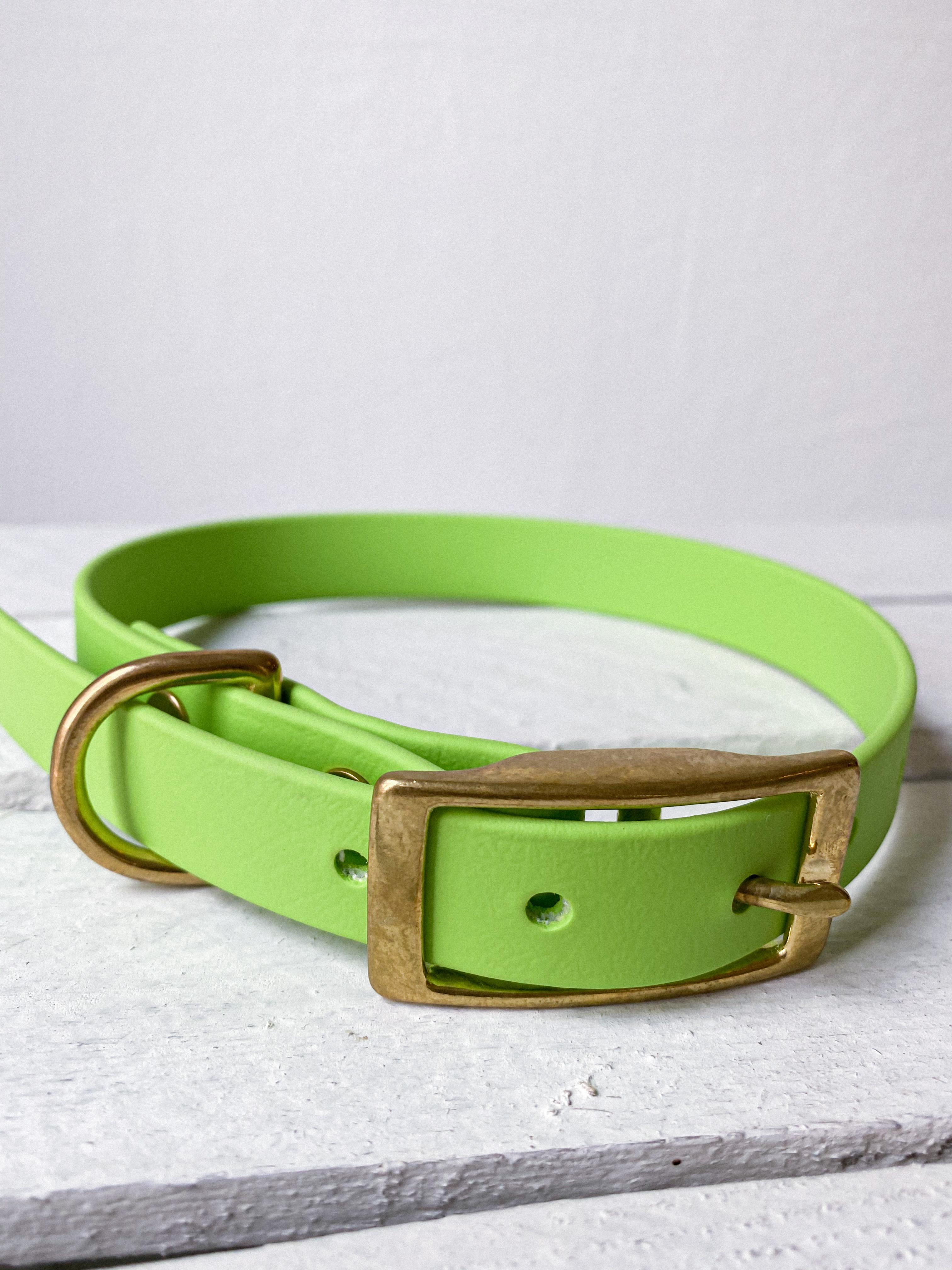 BioThane® - Halsband